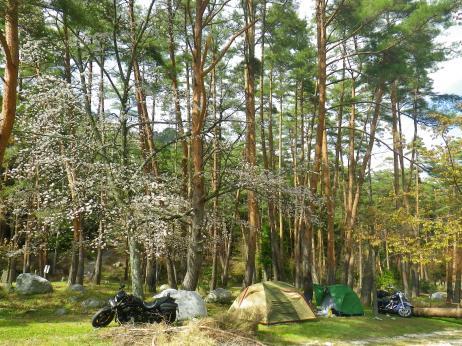 御座松キャンプ場 2013 サイト