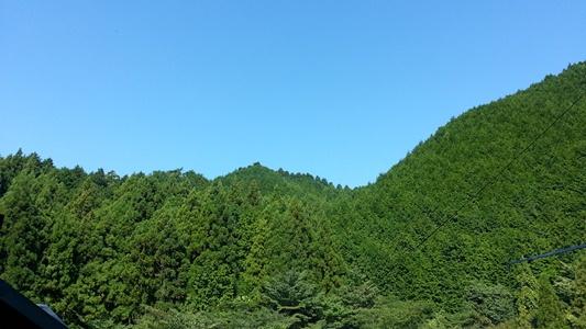 20131014_095151.jpg
