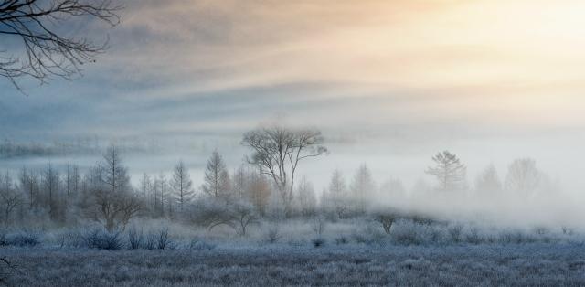 霧氷の小田代