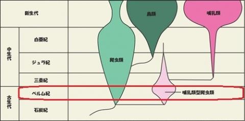 pp14年1月6日 (22)pp