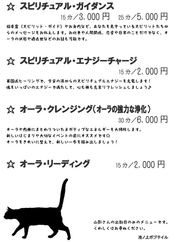 201304070101561df.jpg