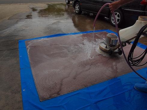 カーペット丸洗い