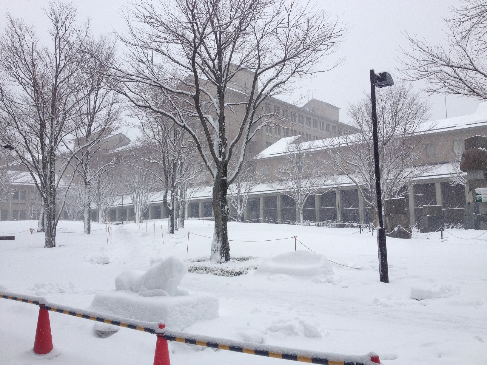 大雪の中の大学院入試