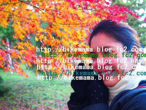 PC053825.jpg
