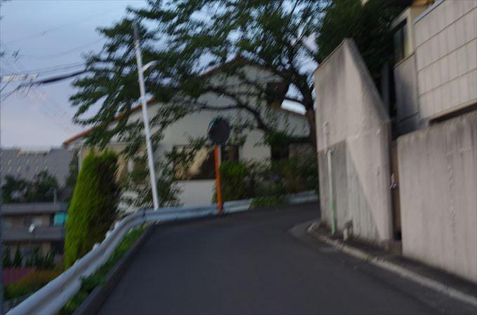 IMGP7527_R.jpg