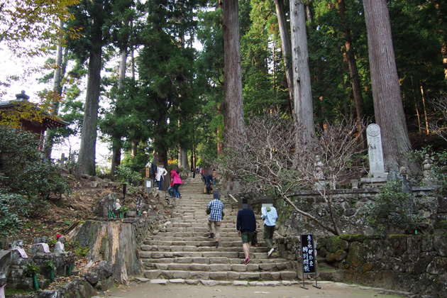 20141124_murouji_temple-05.jpg