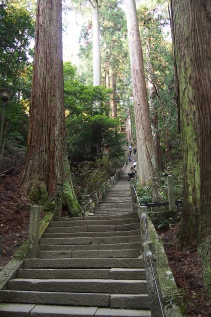 20141124_murouji_temple-06.jpg