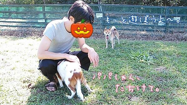 fc2_2013-09-24_17-50-57-087.jpg