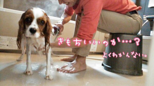 fc2_2013-10-28_20-26-29-640.jpg