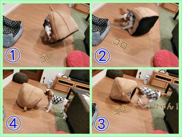 fc2_2013-11-14_21-55-49-323.jpg