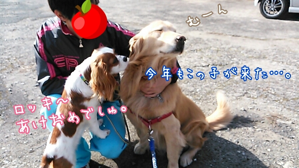 fc2_2014-01-06_20-51-21-994.jpg
