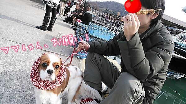 fc2_2014-02-02_18-49-40-805.jpg