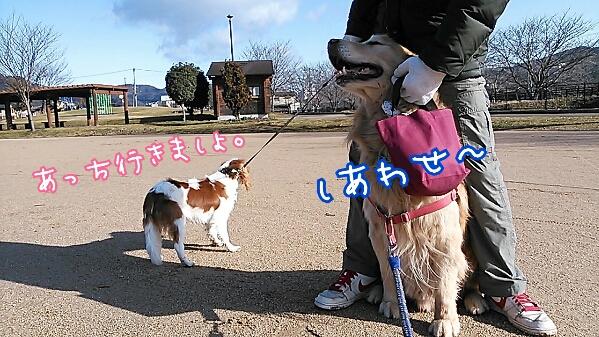fc2_2014-02-15_07-56-06-100.jpg