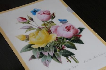 IMG_0136_201309011534336b3.jpg
