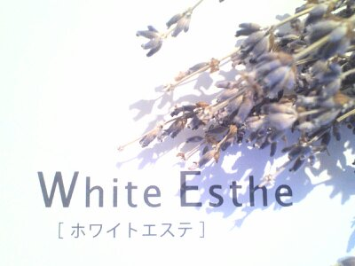 ブログ更新【NPO法人北海道ホワイトビューティー協会】