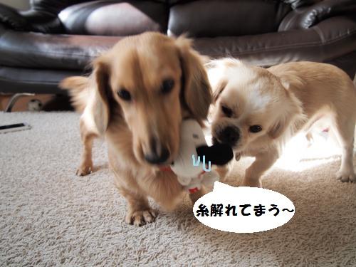 004_convert_20131126232238.jpg