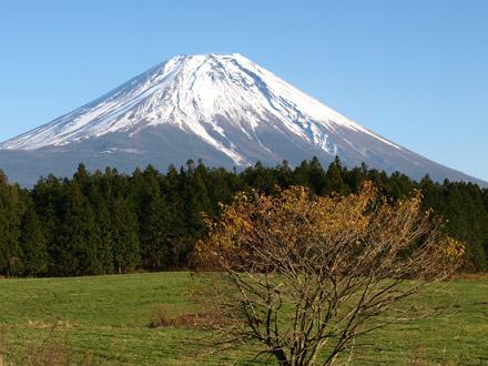 道の駅あさぎりから見た富士山