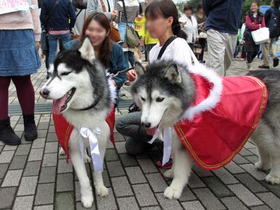 日獣祭ゲーム大会