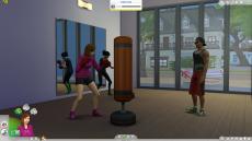 Sims4_i7-4790_GTX760 192bit_フレームレート_06