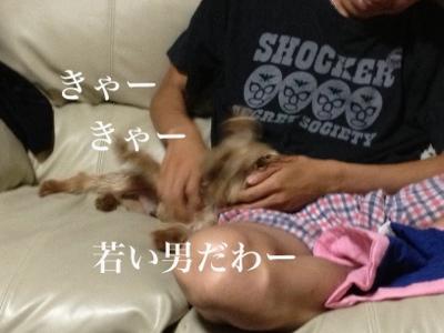 fc2blog_201307062236164af.jpg