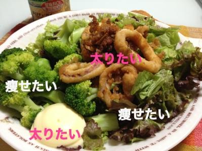 fc2blog_2013091717044273e.jpg