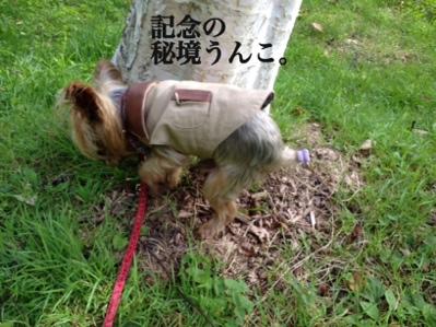 fc2blog_20130922151308981.jpg