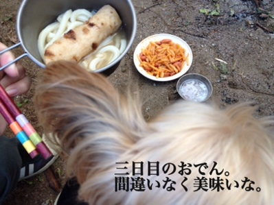 fc2blog_20130926083652612.jpg