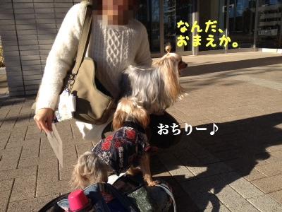 fc2blog_20140116103909c74.jpg