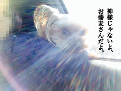 fc2blog_20140118224709a39.jpg