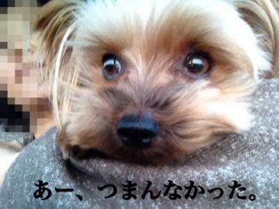 fc2blog_20140118225852917.jpg