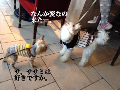 fc2blog_20140128171836d27.jpg