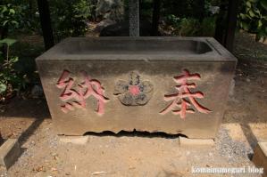 北野神社(練馬区東大泉)19