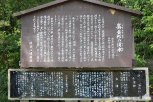 鳩ヶ谷八幡宮(岐阜県大野郡白川村鳩谷)4
