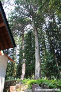 水穂神社(岐阜県飛騨市古川町下気多)14