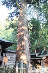 日枝神社(岐阜県)高山市城山29