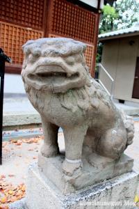 八坂神社(大阪市平野区喜連東)12