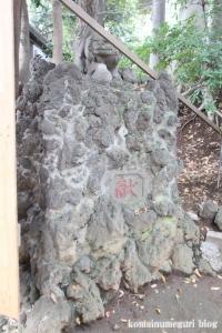 小豆沢神社(板橋区小豆沢)27
