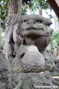 小豆沢神社(板橋区小豆沢)28