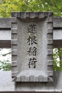 蓮根氷川神社(板橋区蓮根)13