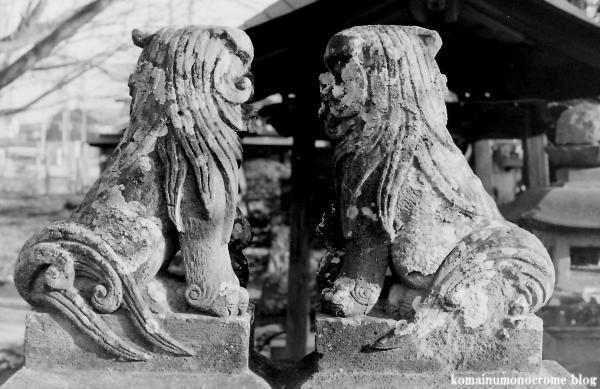 神明神社(埼玉県加須市南篠崎)2