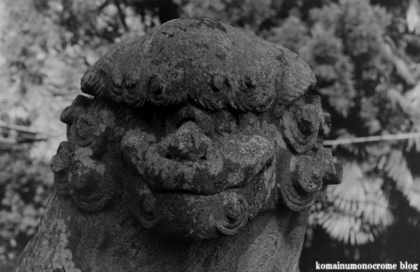 関白社(さいたま市岩槻区平林寺)4