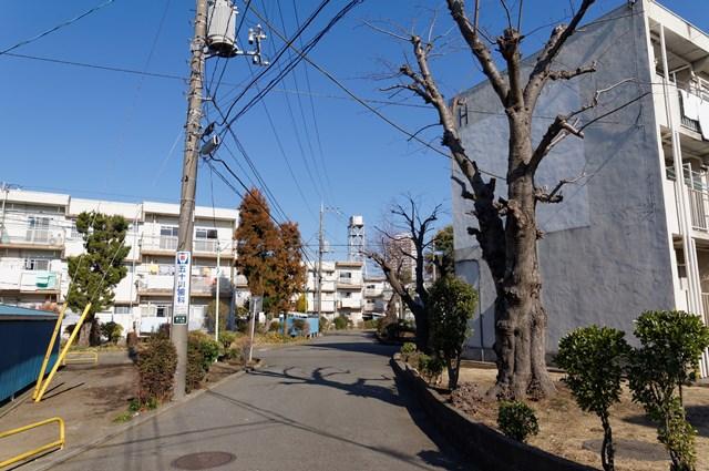 南端から見た神奈川県営鶴ヶ峰団地と給水塔