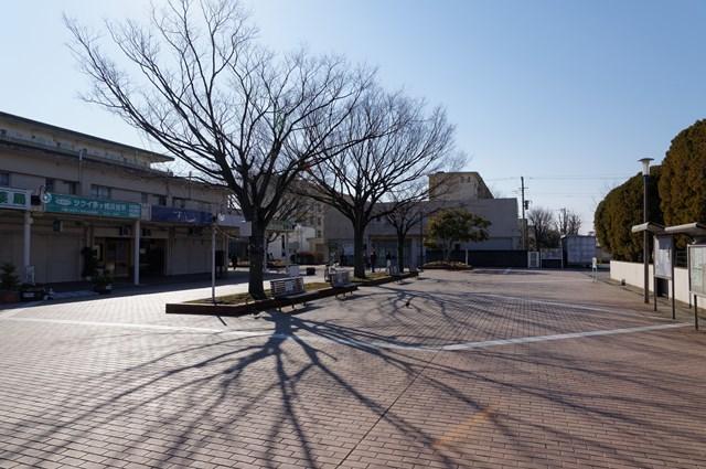 公団浜見平団地の枯れ木と影