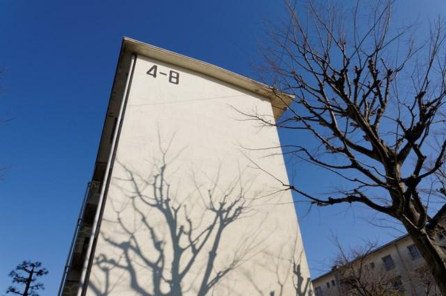 公団浜見平団地の住棟妻側と木の影