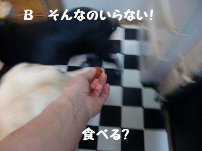CIMG9569_20130722140410.jpg