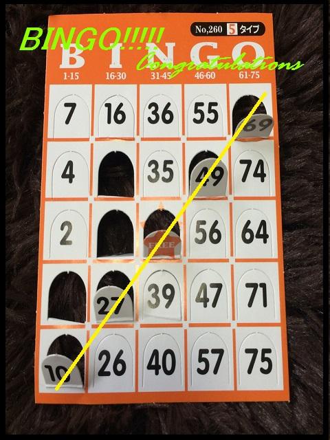 bingo5.jpg