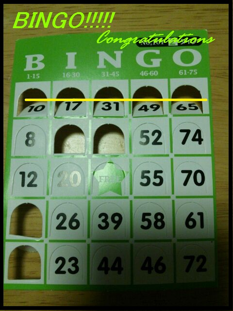 bingo7.jpg