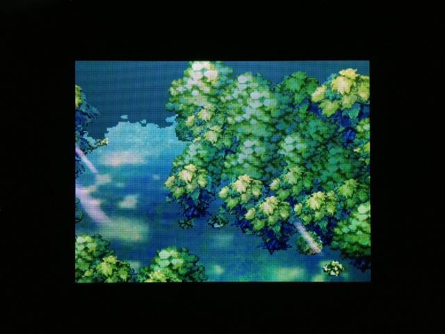 ドラクエ5 北米版 妖精の森10