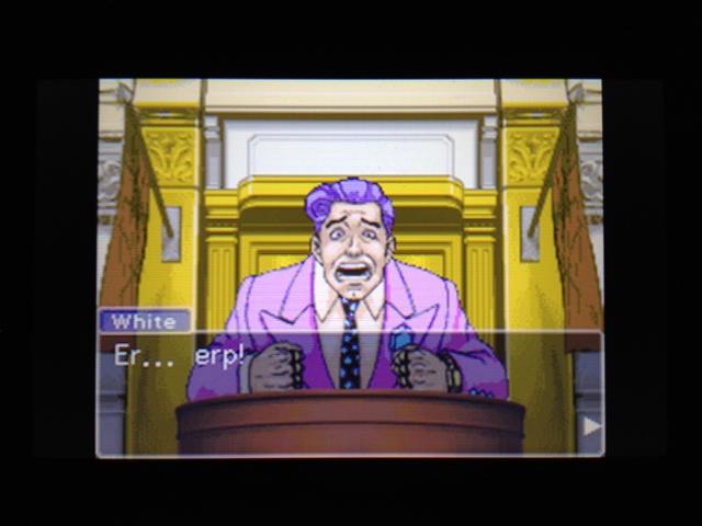 逆転裁判 北米版 フェニックス法廷221