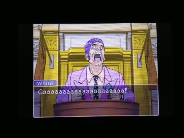 逆転裁判 北米版 フェニックス法廷230